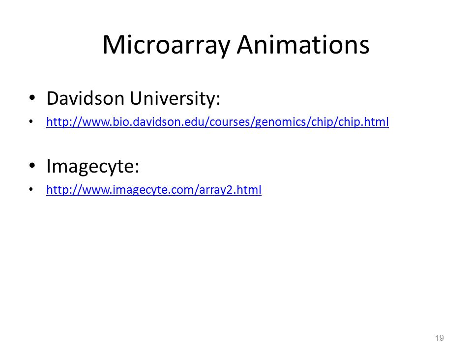 Microarray Animations