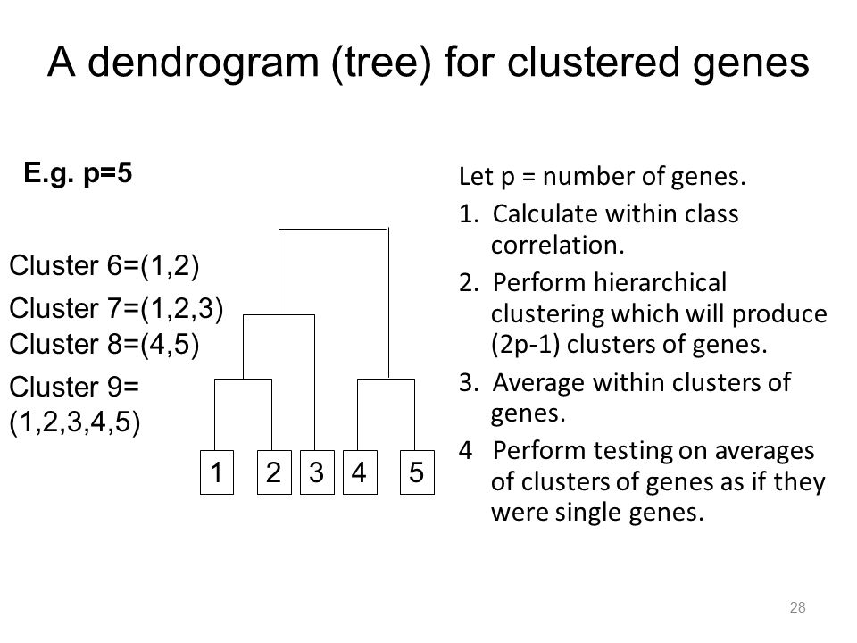 A dendrogram (tree) for clustered genes