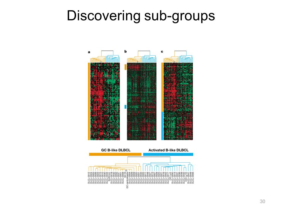 Discovering sub-groups
