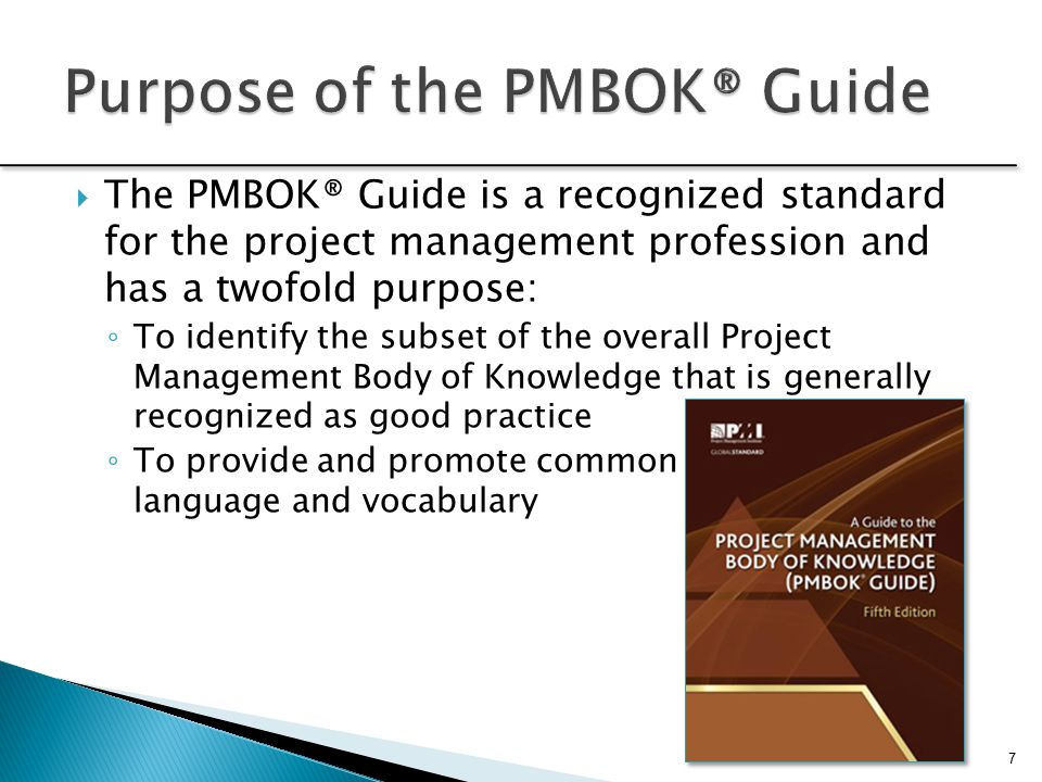 pmbok guide and standards pdf