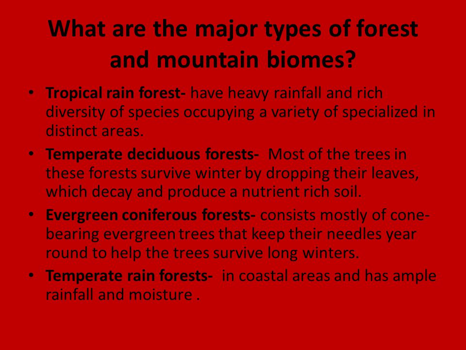 What are the major types of forest and mountain biomes