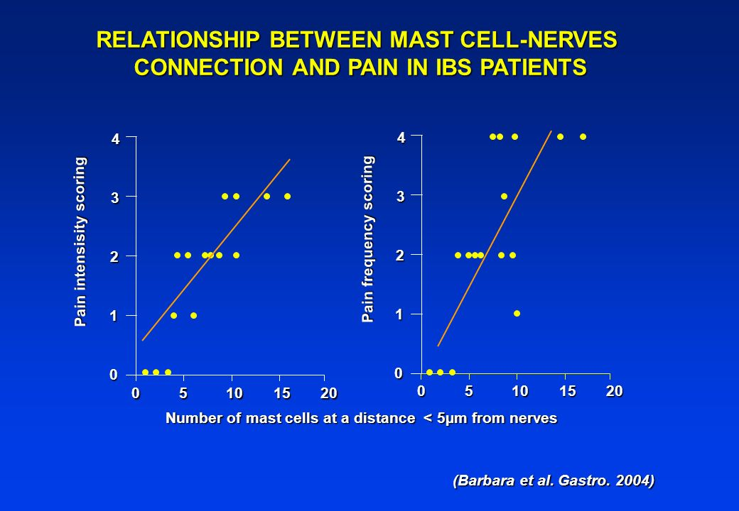 RELATIONSHIP BETWEEN MAST CELL-NERVES