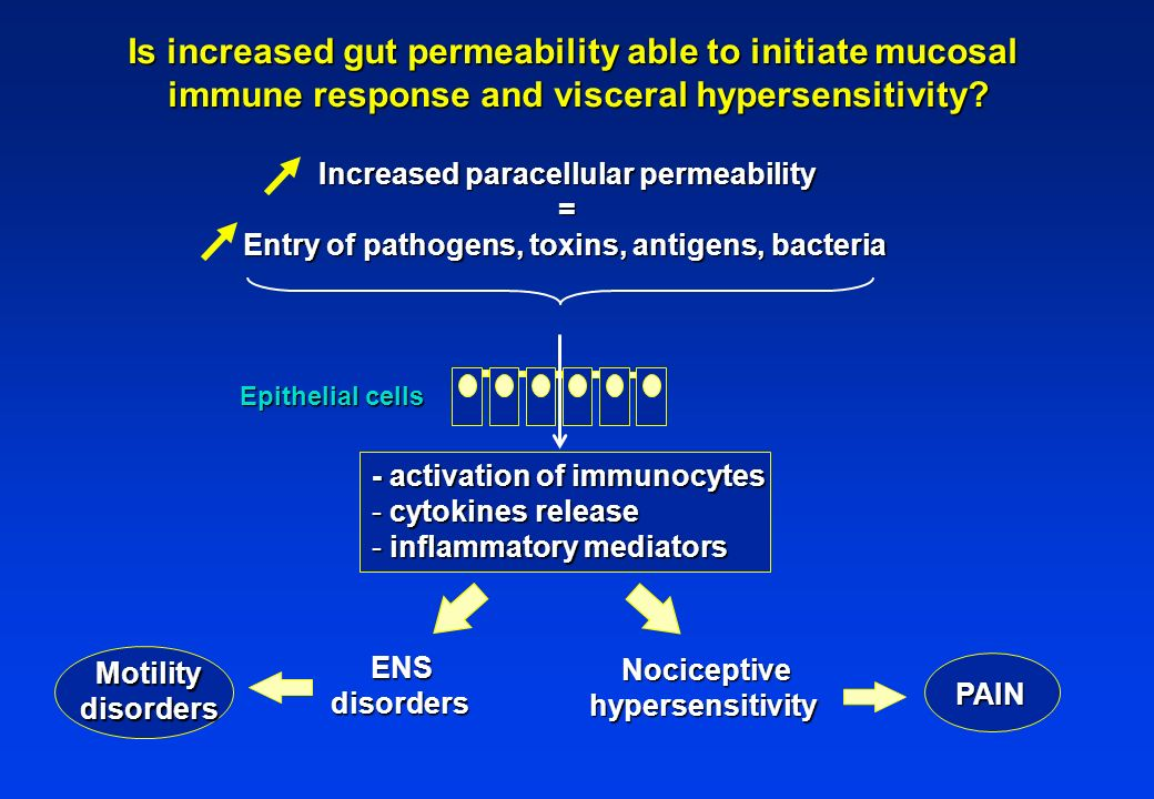 Is increased gut permeability able to initiate mucosal