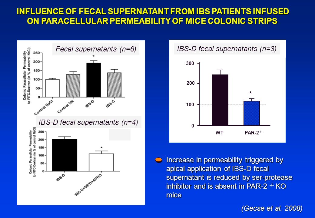 INFLUENCE OF FECAL SUPERNATANT FROM IBS PATIENTS INFUSED