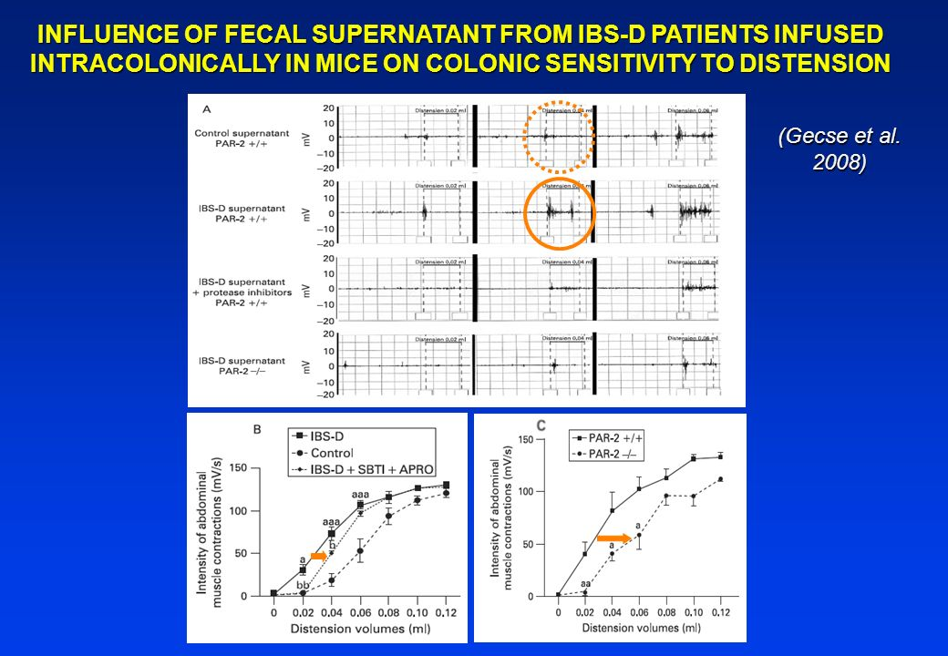 INFLUENCE OF FECAL SUPERNATANT FROM IBS-D PATIENTS INFUSED