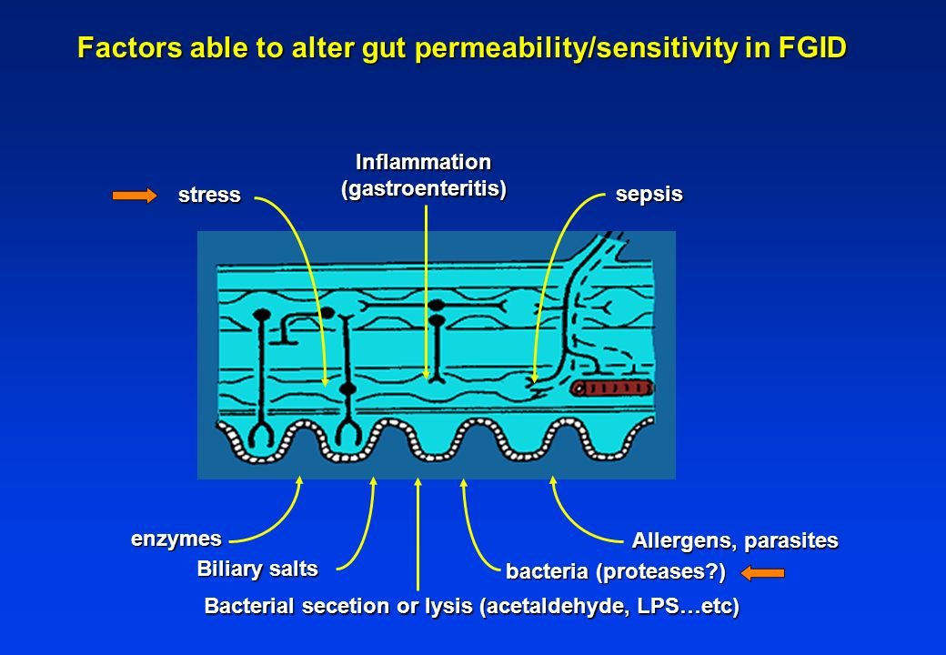 Factors able to alter gut permeability/sensitivity in FGID