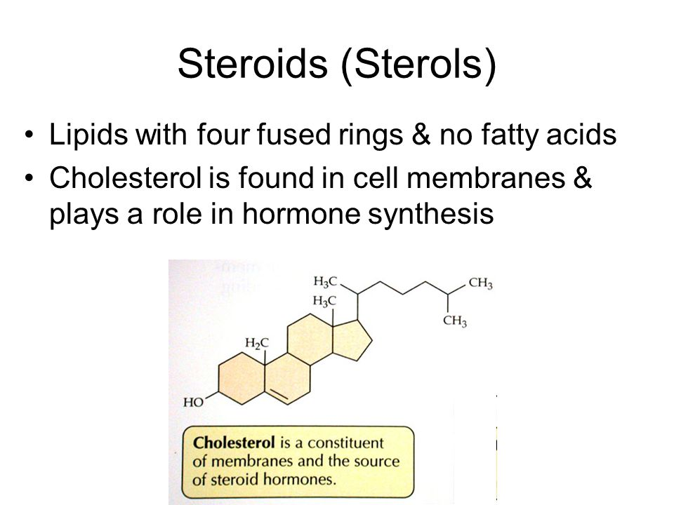 Steroids (Sterols) Lipids with four fused rings & no fatty acids