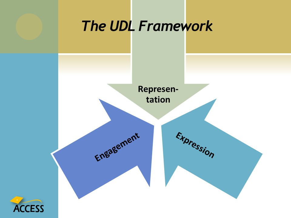 Represen-tation Expression Engagement The UDL Framework