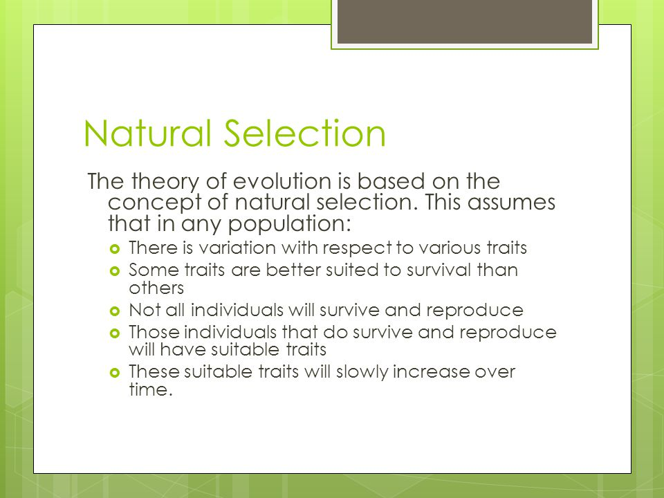 Explain The Unit Of Natural Selection
