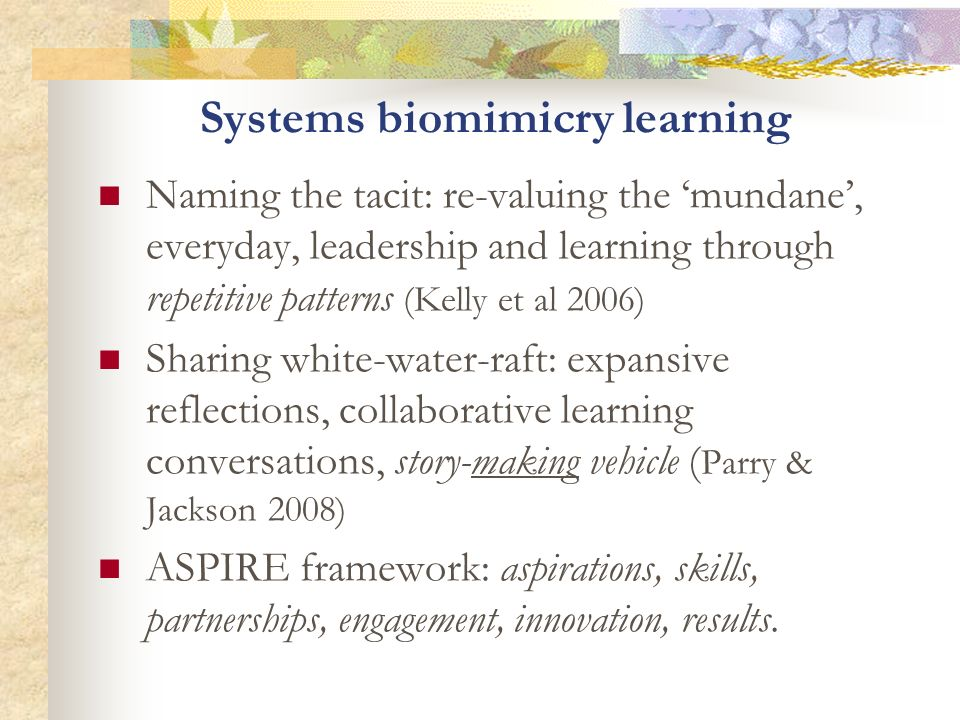 Systems biomimicry learning