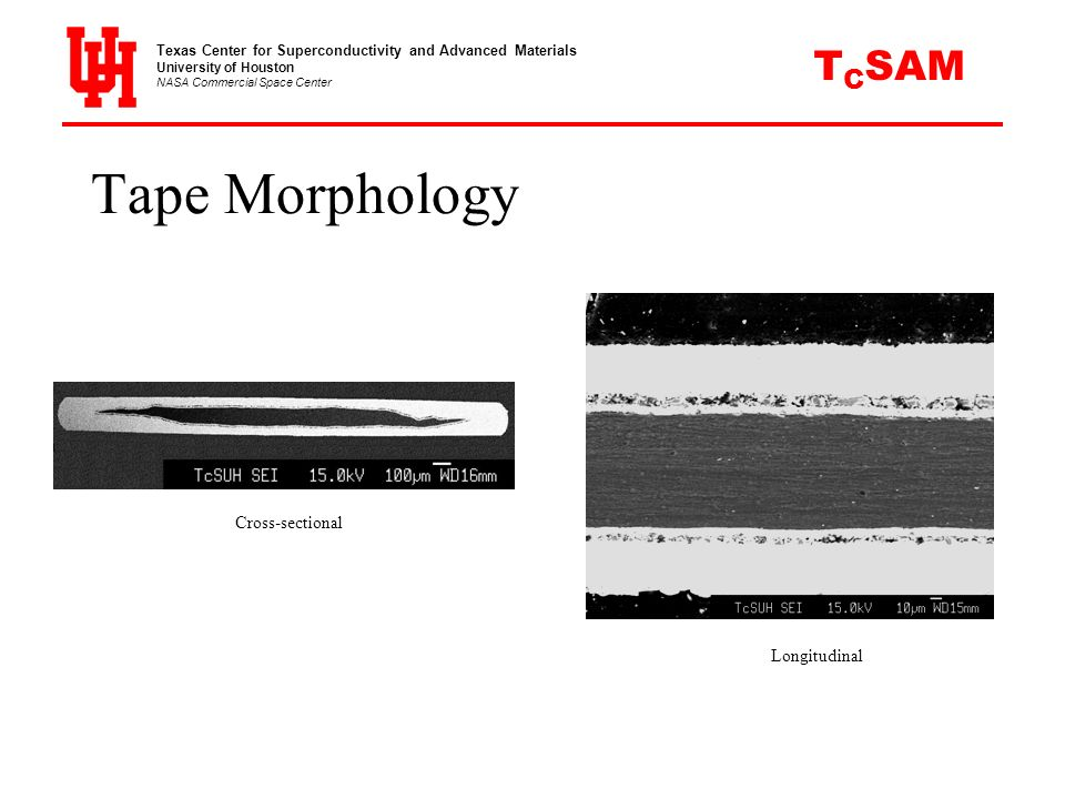Tape Morphology CSAM T Cross-sectional Longitudinal