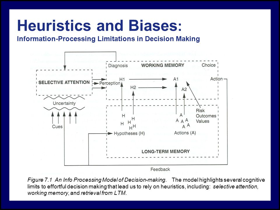 Cognitive Science: An Introduction/Biases and Reasoning Heuristics