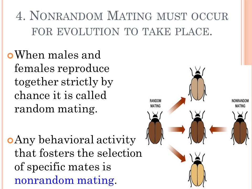 Why Is Natural Selection Not A Random Process