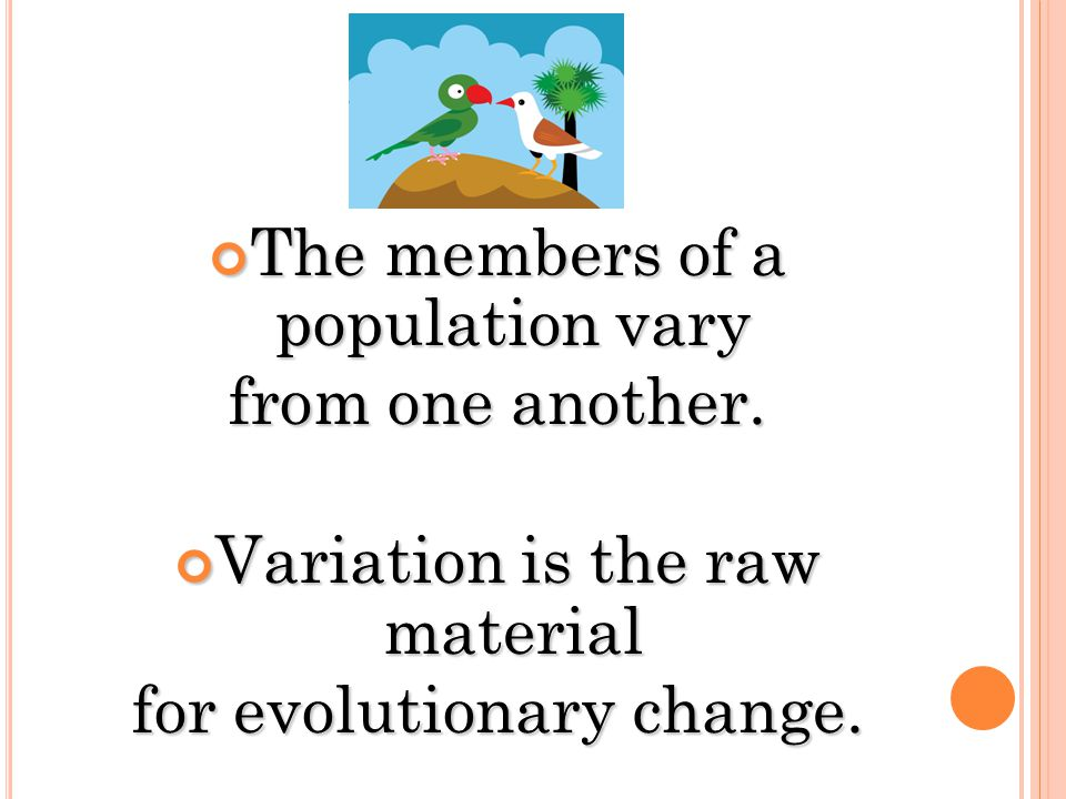 genetic variation is the raw material for evolution essay However, mutation is random in the evolution, and provides raw material for  natural selection, genetic drift,  both natural selection and genetic drift decrease  genetic variation  essay about natural selection, scale, and cultural evolution.