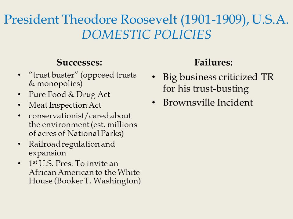 theodore roosevelts domestic policy The theodore roosevelts domestic policy is one of the most popular assignments among students' documents if you are stuck with writing or missing ideas, scroll down and find inspiration in the best samples theodore roosevelts domestic policy is quite a rare and popular topic for writing an essay, but it certainly is in our database.