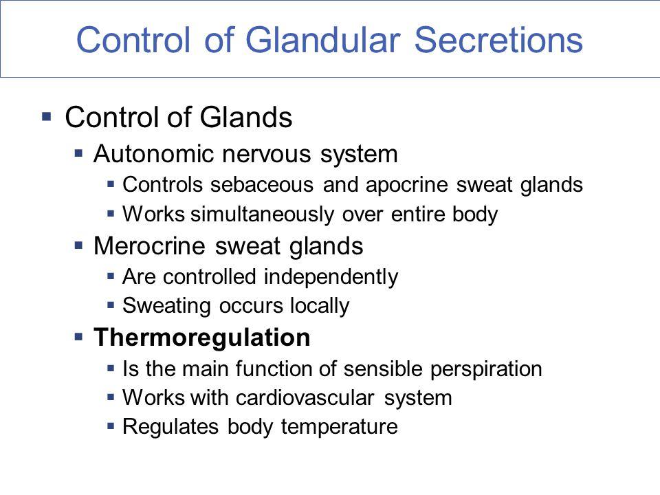 Merocrine glands activation autonomic or somatic cell