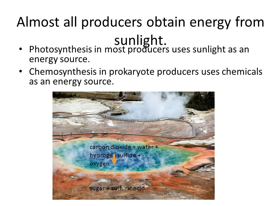 Chemosynthesis energy source