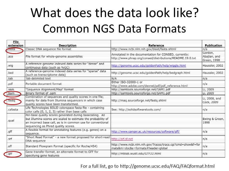 What does the data look like Common NGS Data Formats