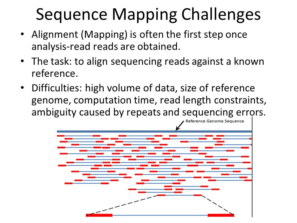 Sequence Mapping Challenges