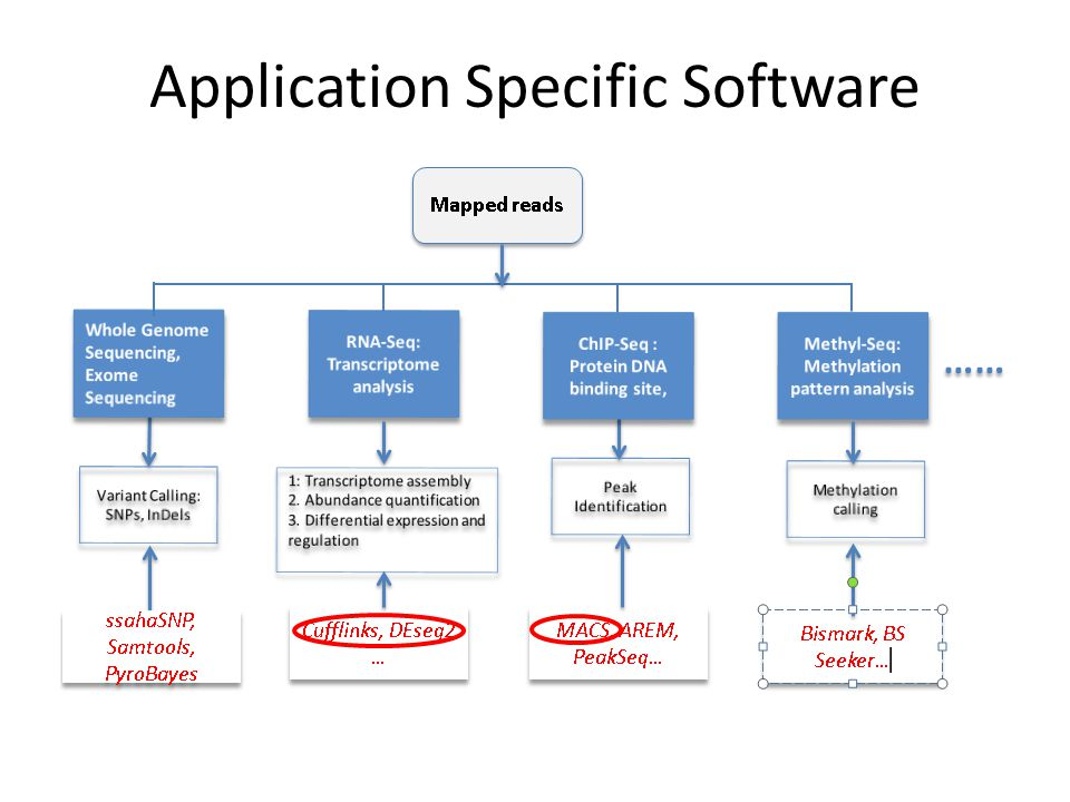 Application Specific Software