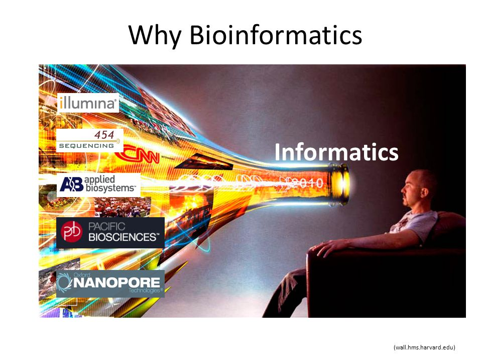 Why Bioinformatics Informatics (wall.hms.harvard.edu)