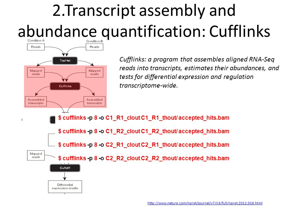 2.Transcript assembly and abundance quantification: Cufflinks