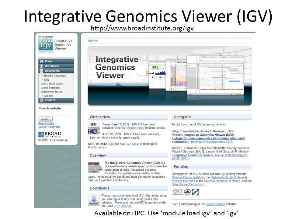 Integrative Genomics Viewer (IGV)