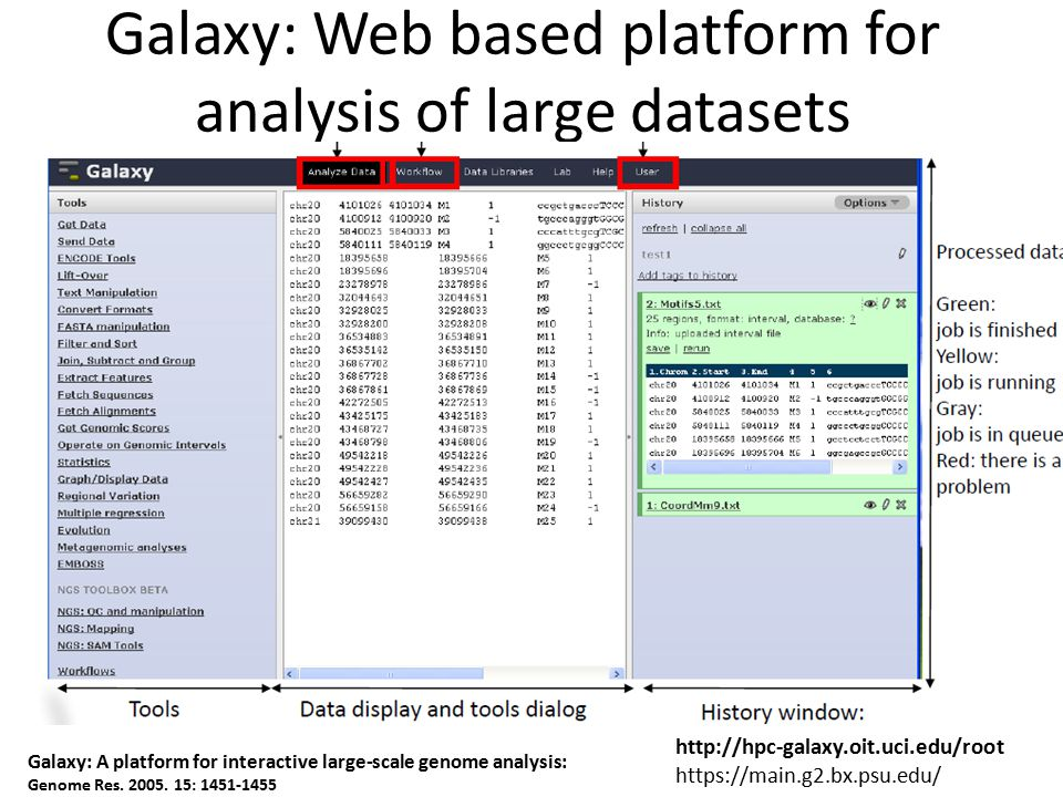 Galaxy: Web based platform for analysis of large datasets