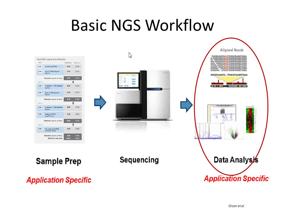 Basic NGS Workflow Olson et al.