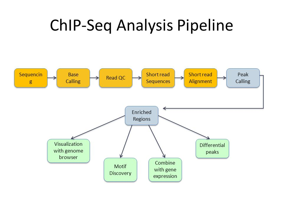ChIP-Seq Analysis Pipeline
