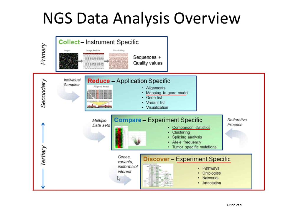 NGS Data Analysis Overview