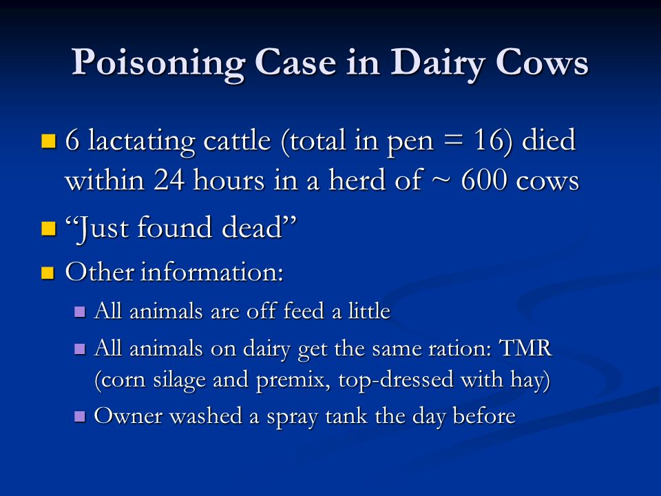 Poisoning Case in Dairy Cows