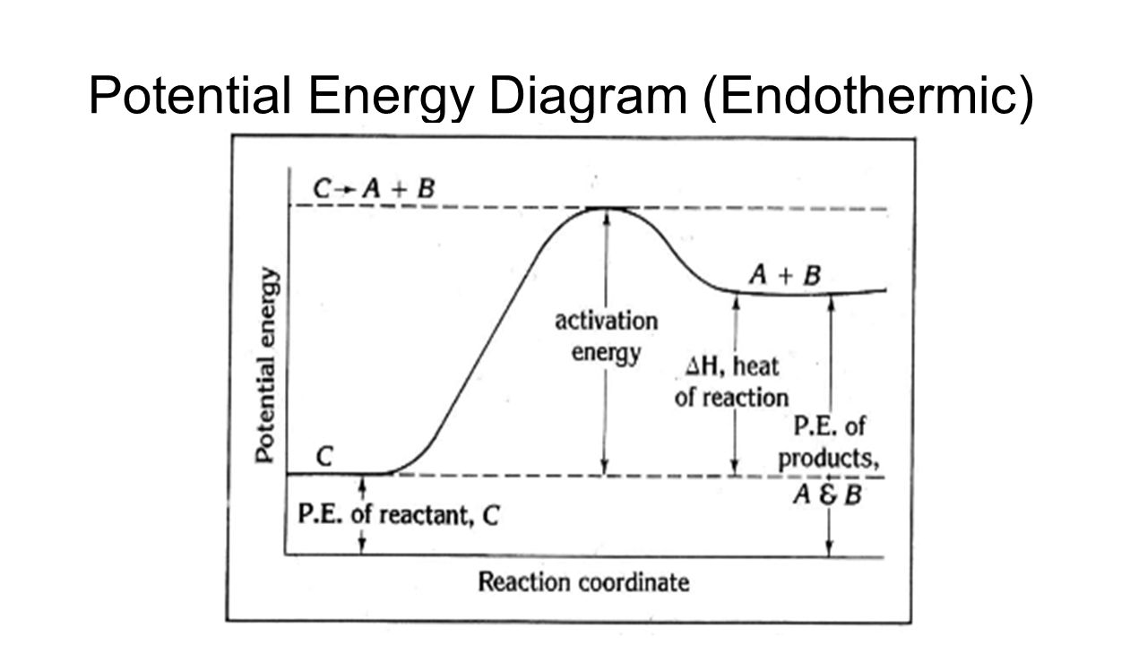 potential energy diagram Graph 1: use the potential energy diagram for the reaction x + y - z to complete the chart below graph 2 1 draw a potential energy diagram for an endothermic reaction.
