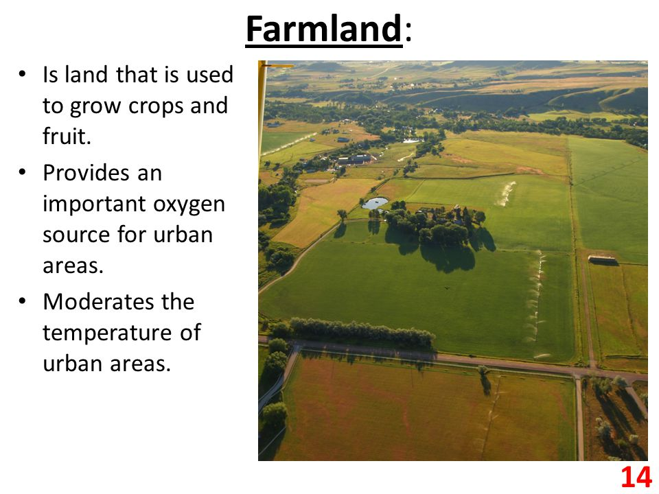 Farmland: Is land that is used to grow crops and fruit.
