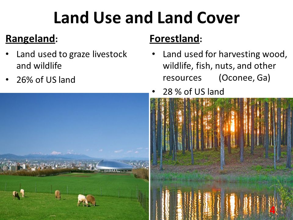 Land Use and Land Cover Rangeland: Forestland: