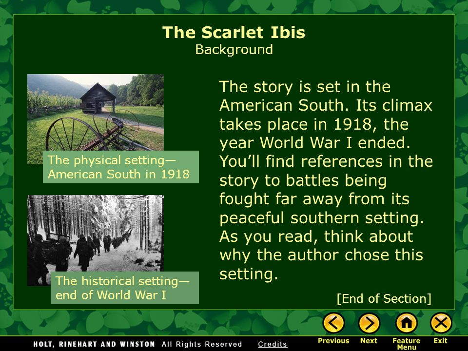 "positive effects of pride in the scarlet ibis 5 paragraph essay   pride in ""the scarlet ibis"" and ""the  is it possible to possess a trait that is both positive and negative or helpful and."