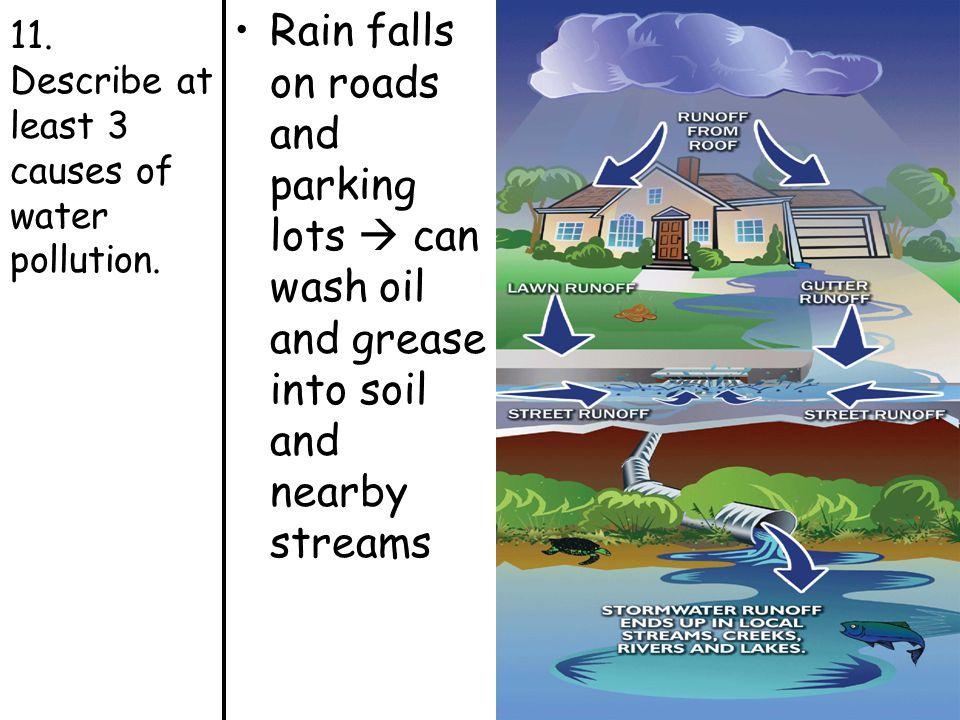 Topic ecology aim describe the effects of environmental for Describe soil