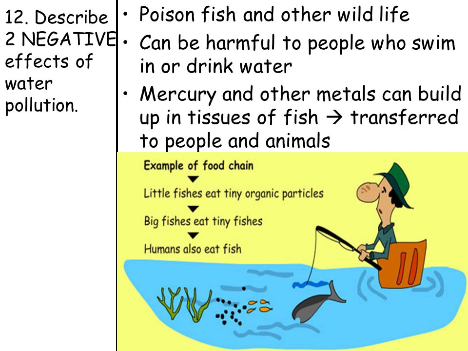 the negative effects of water pollution Agricultural technology - the effects of pollution: practically all forms of  technology exact  a high proportion of sodium in irrigation water supply affects  plant life.