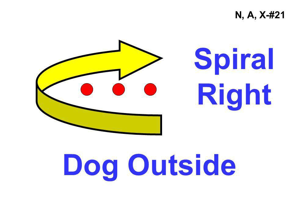 N, A, X-#21 Spiral Right Dog Outside