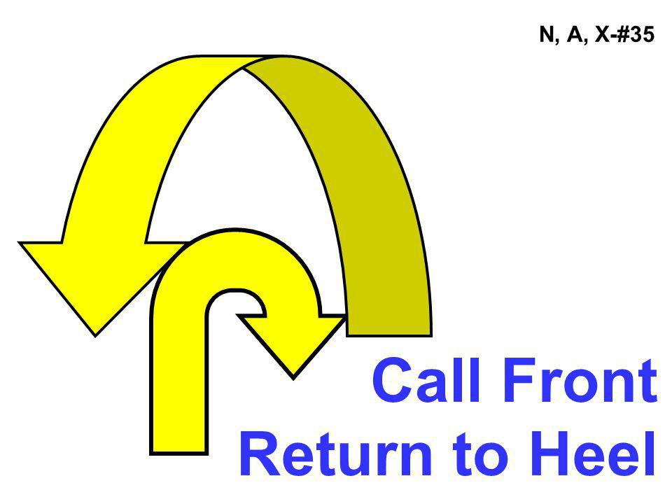 N, A, X-#35 Call Front Return to Heel