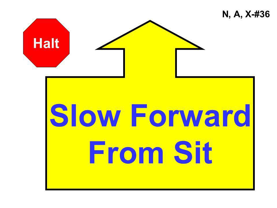N, A, X-#36 Halt Slow Forward From Sit