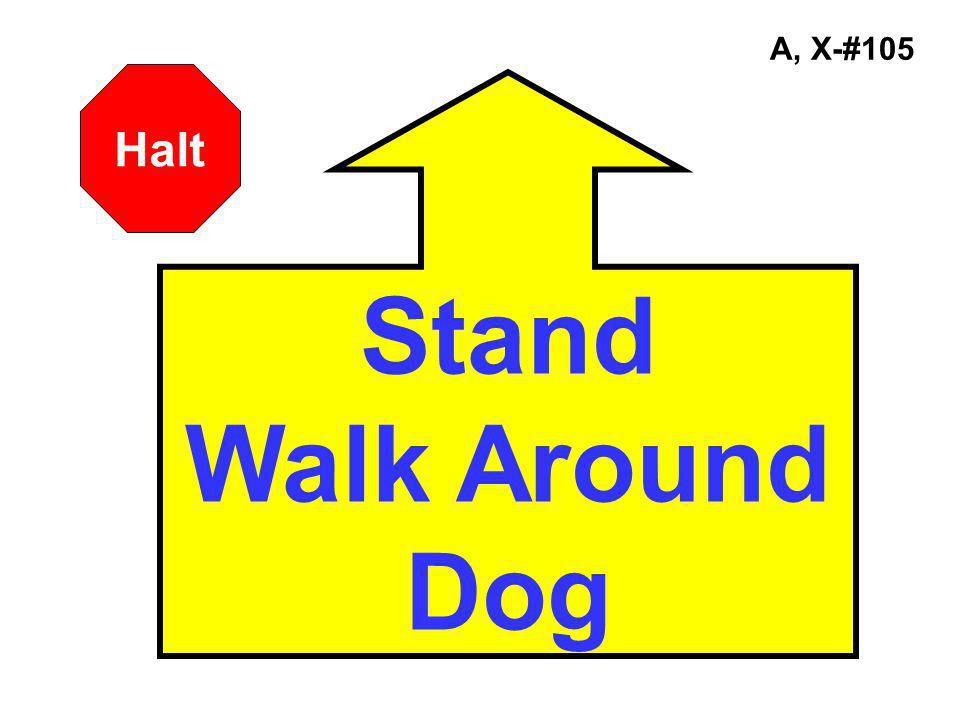 A, X-#105 Halt Stand Walk Around Dog