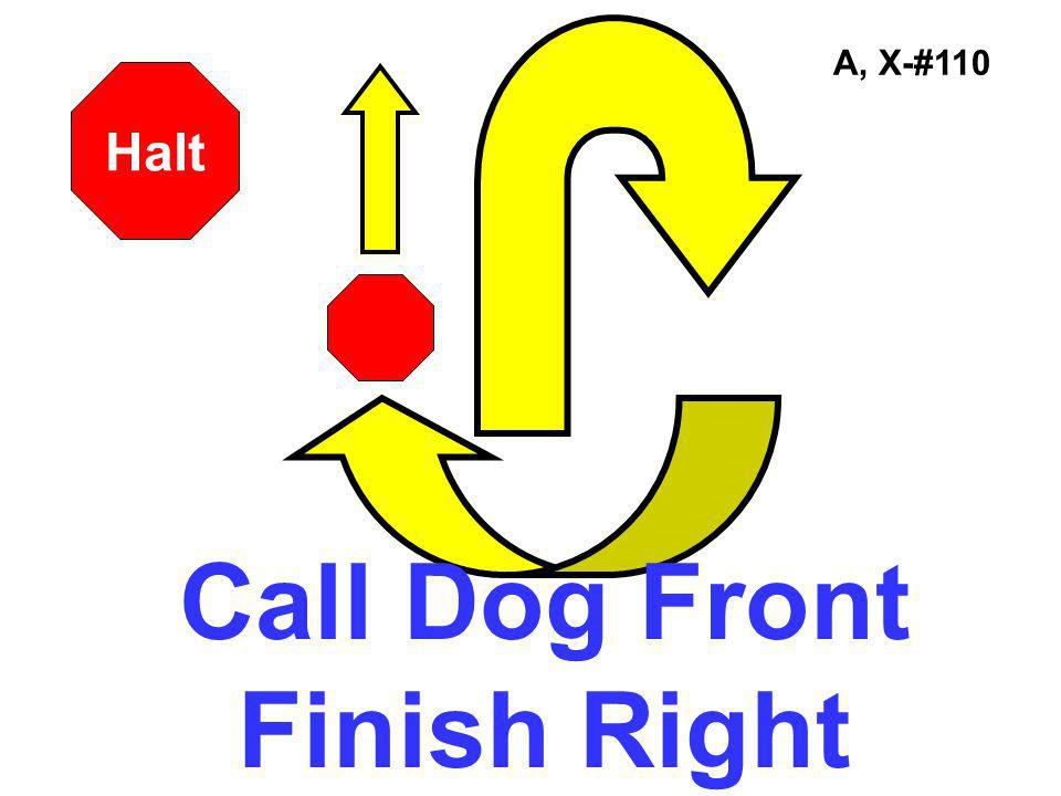 Call Dog Front Finish Right