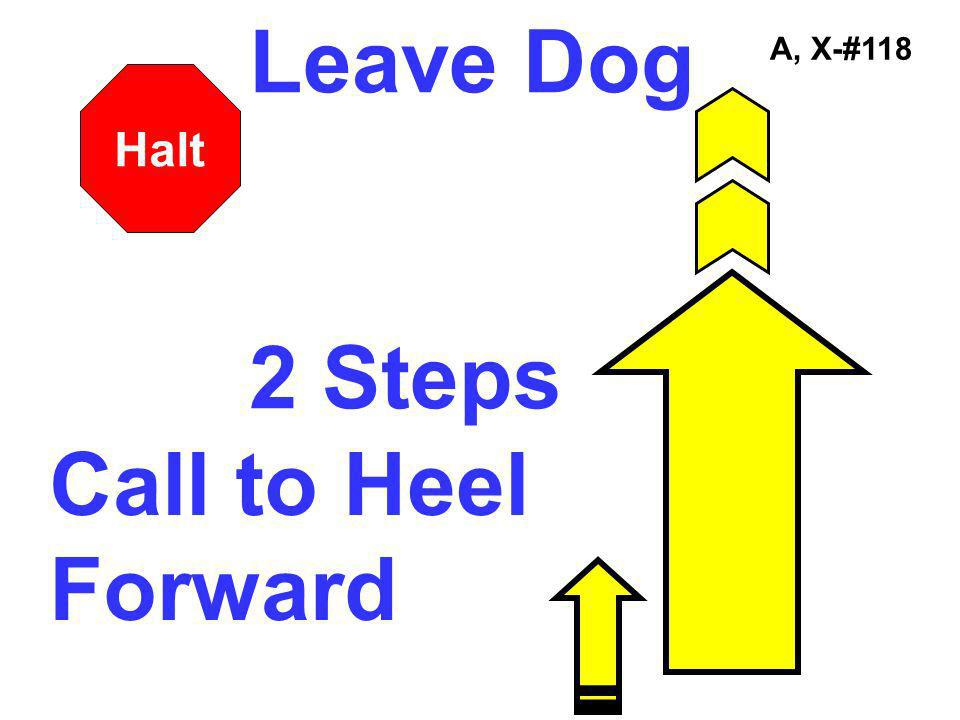 Leave Dog 2 Steps A, X-#118 Halt Call to Heel Forward