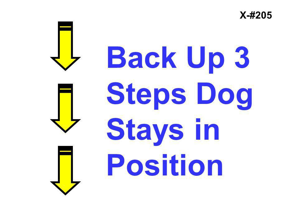 X-#205 Back Up 3 Steps Dog Stays in Position