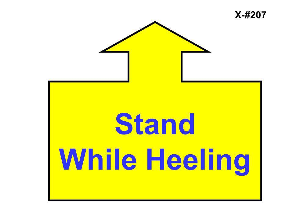 X-#207 Stand While Heeling