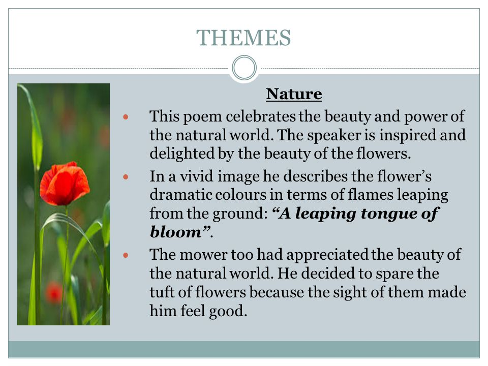 THEMES Nature This Poem Celebrates The Beauty And Power Of Natural World