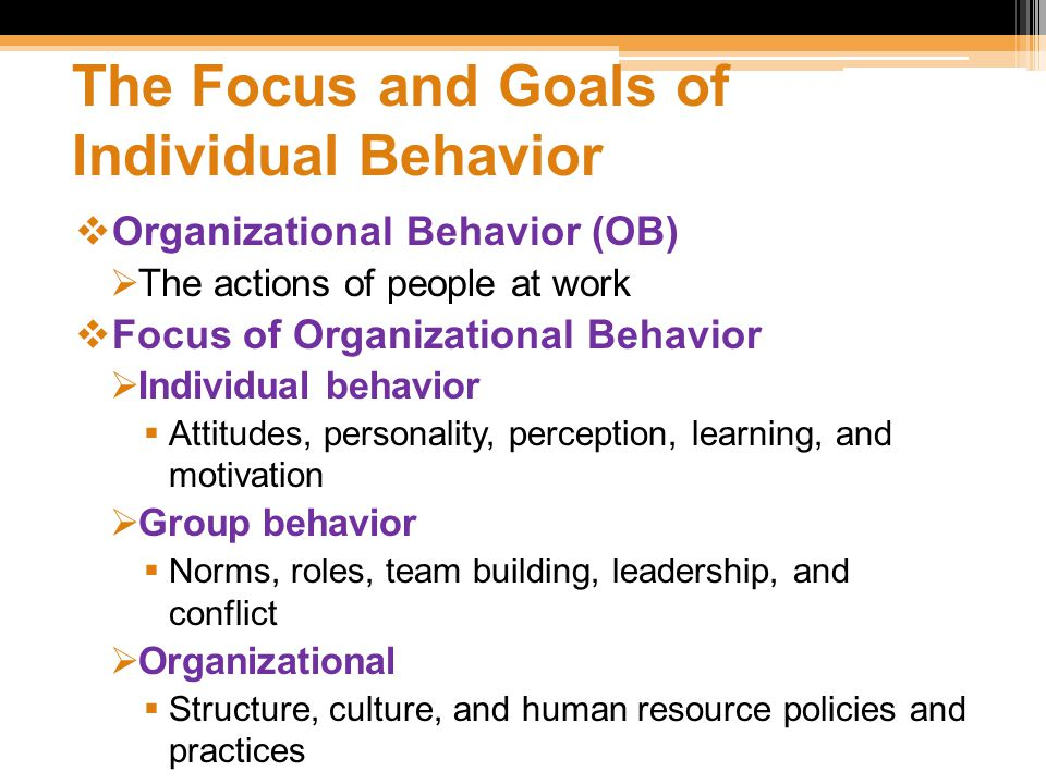 focal point of organizational behaviour Ob - personal reflection paper how they connect within the context of organizational behavior although hrd deals with many issues this report's focal point.