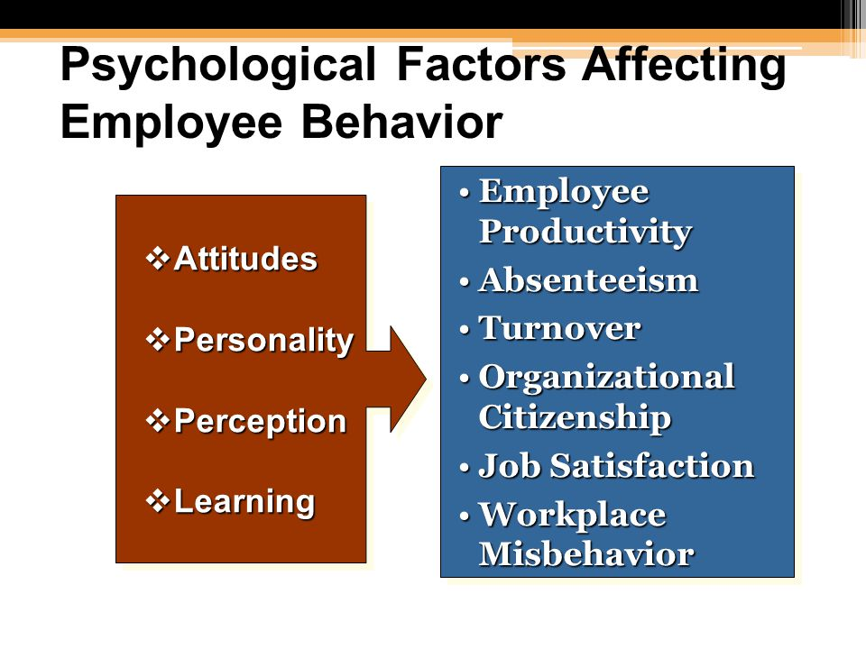 Factors Influencing Individual Behavior