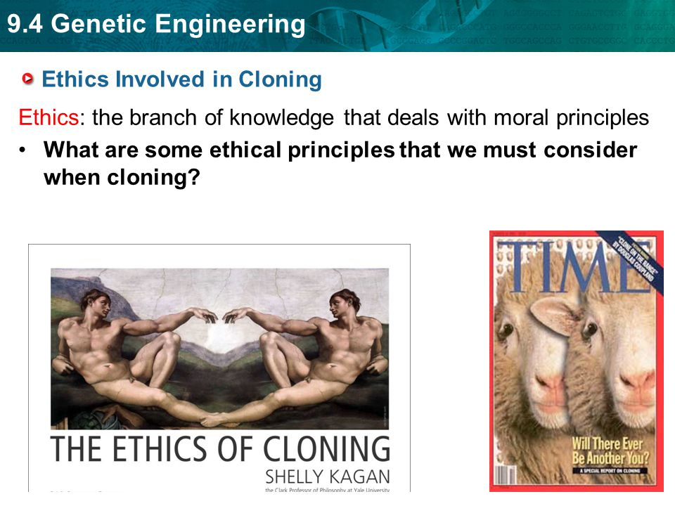 the ethics of cloning The ethics of cloning and creating embryonic stem cells as a source of tissue for transplantation: time to change the law in australia aust n z j med 2000.